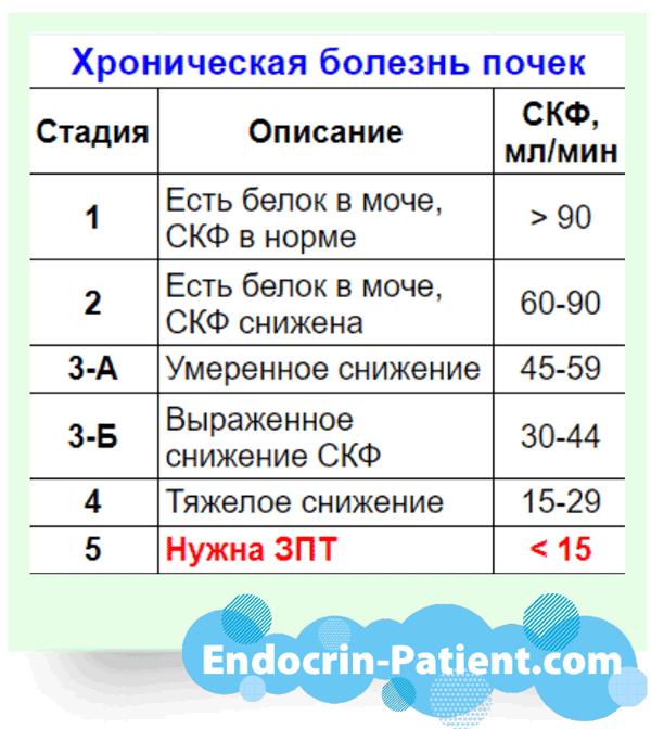 Скорость клубочковой фильтрации и стадии хронической болезни почек